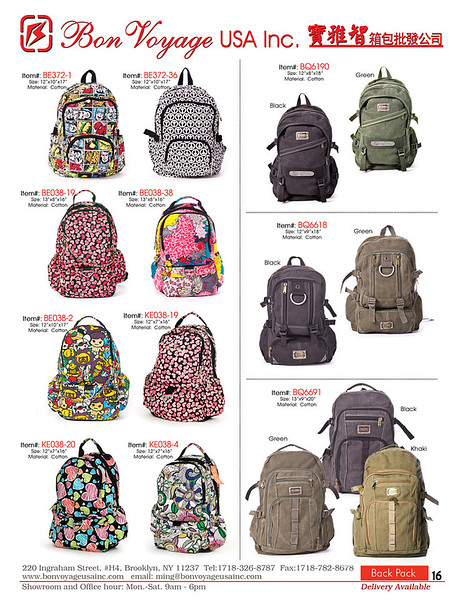 BackPack p16-X2.jpg
