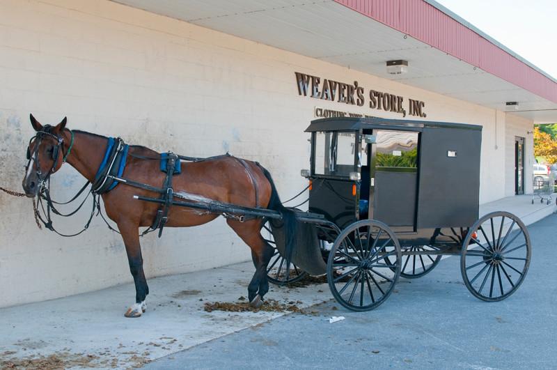 AmishCountry21.jpg