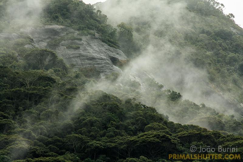Clouds between the rainforest hills