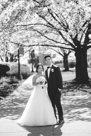 Ben and Dana Wedding Temp
