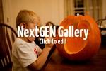 pumpkincarving2014