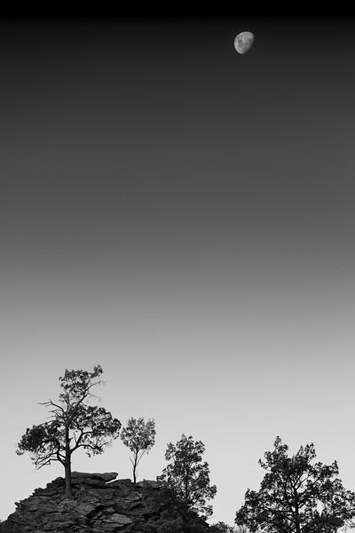 Moon over Parachilna Gorge