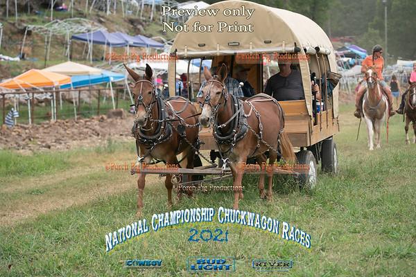 Pleasure Wagons