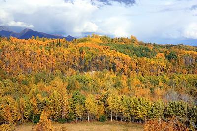 Fall time in Alaska