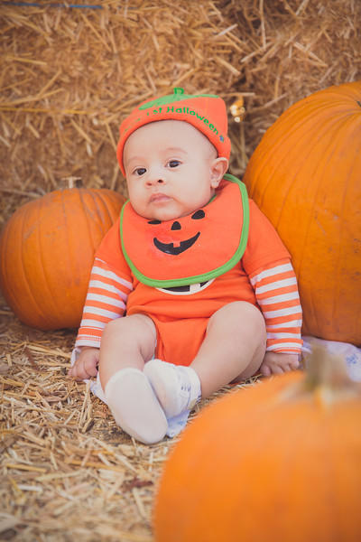 pumpkinpatrick-0004.jpg