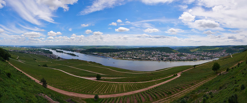 Rüdesheim and Rhine