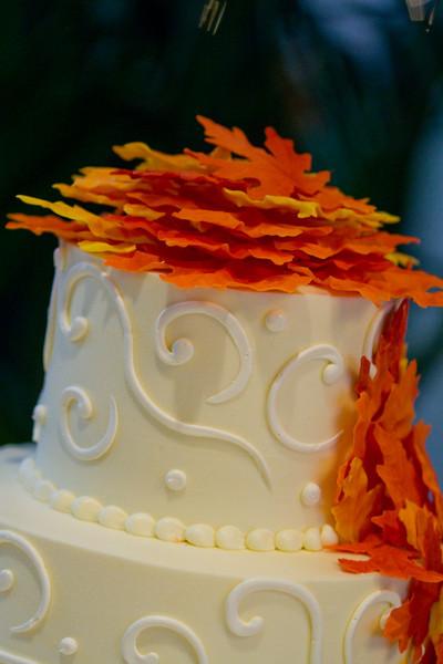 Emmalynne_Kaushik_Wedding-805.jpg
