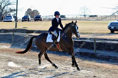 2010-03-07 USEA Horse Trial