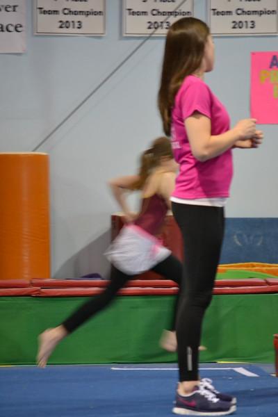 2014 June Gymnastics (3).JPG