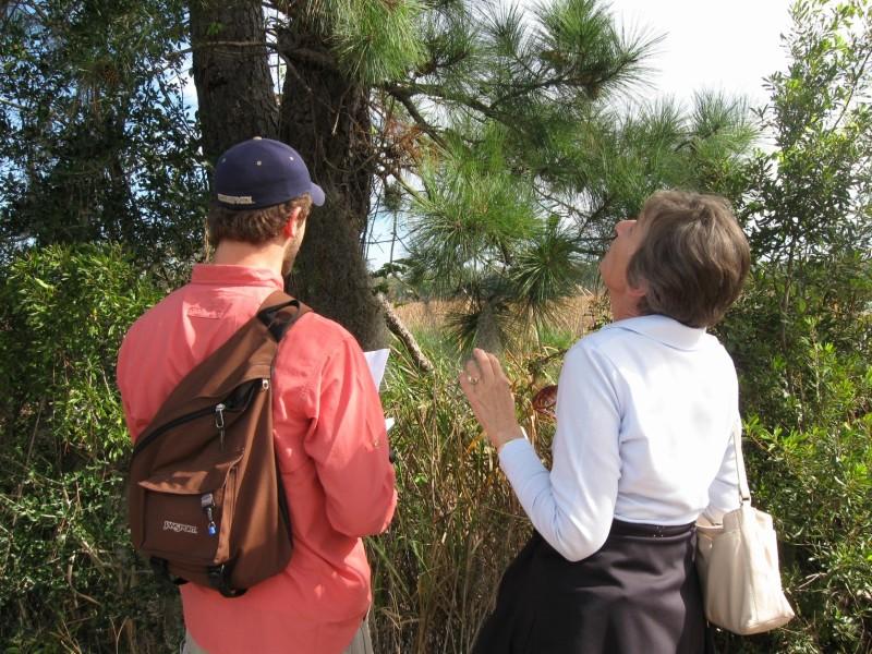 nature walk at middleton