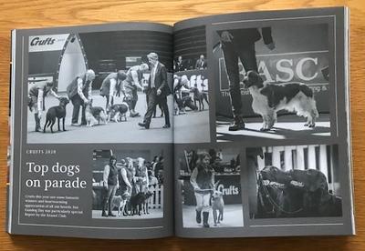 Gundog Journal 2.jpg