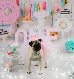 Penelope's 1st Birthday 2020