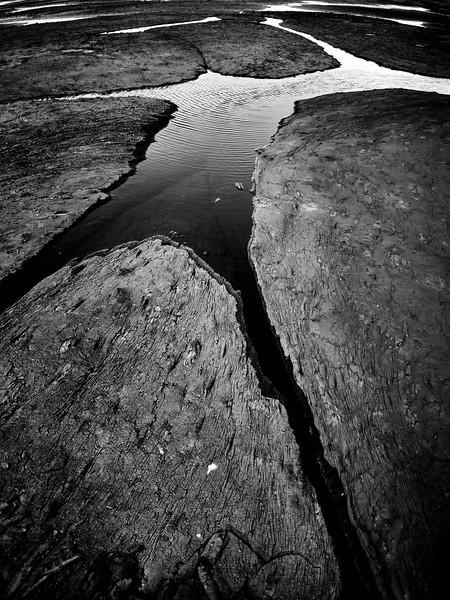 B&W La Brea26.jpg