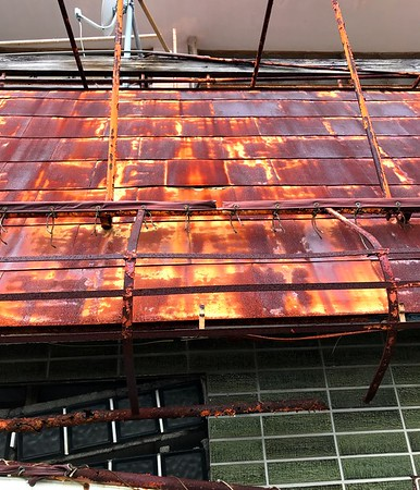 Rust in Japan