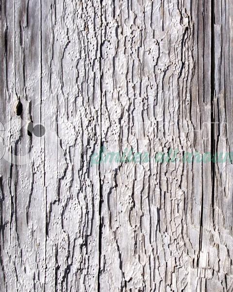 Worn Wood-02_batch_batch.jpg
