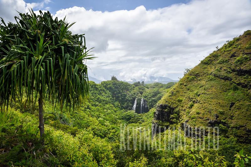 Kauai2017-133.jpg