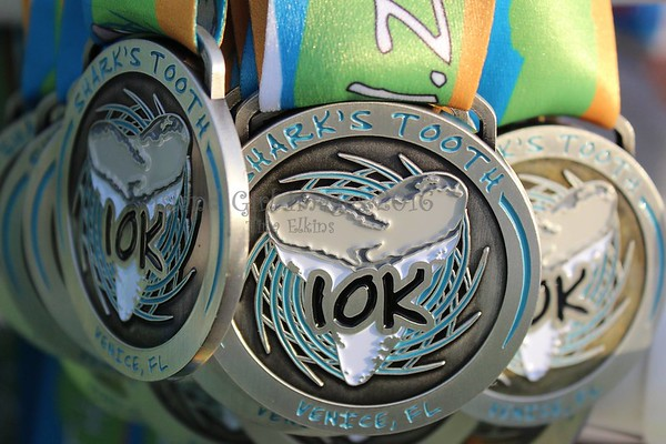 Sharks Tooth 10k, April 11, 2015