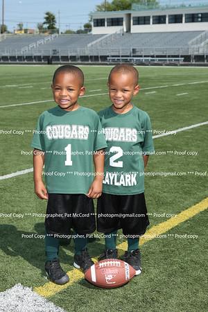 Dream Team Cougars 2012