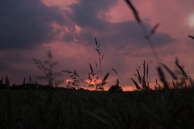 red-clouds-dawn_8777570767_o.jpg
