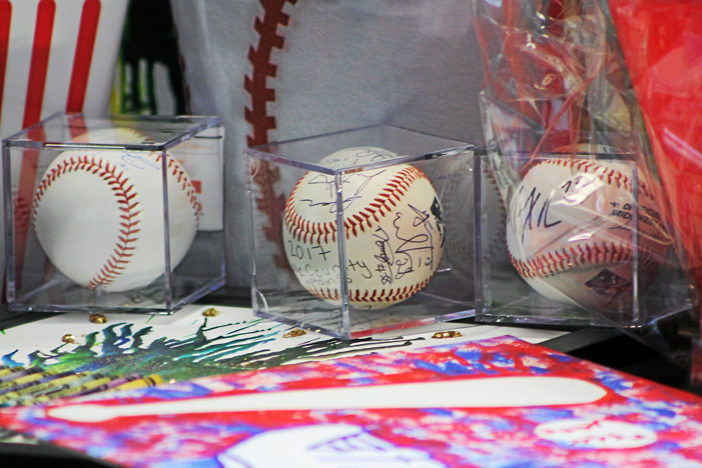 . Kristi Garabrandt � The News-Herald <br> Autographed baseballs were auctioned at the Miracle League of Lake County\'s First Pitch fundraiser. The fundraising event was held April 20, 2017 and attended by nearly 200 people.