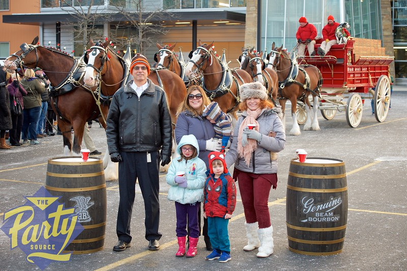 Clydesdale Portraits 327.jpg