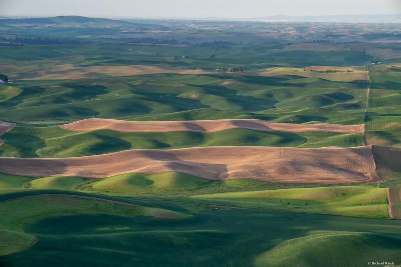 Steptoe Butte--4.jpg