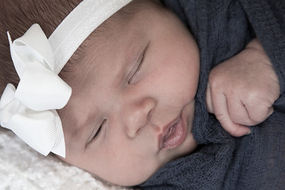 Miss Darcy Newborn Shoot