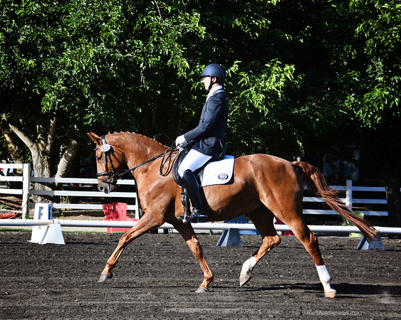 CNDC Dressage Derbys I & II  June 19-21
