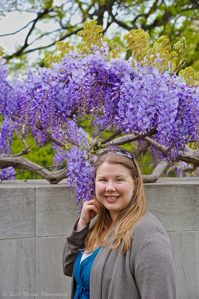 A young woman in front of a flowering Japanese wisteria tree on the National Mall in Washington, DC.