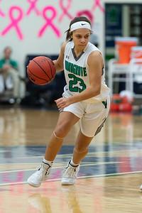 2019.02.13 Girls Basketball: Riverside @ Woodgrove