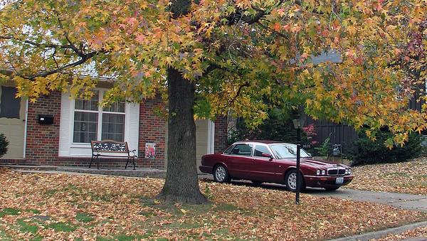 November 9, 2008:  A  beautiful fall day in Missouri .  .  .