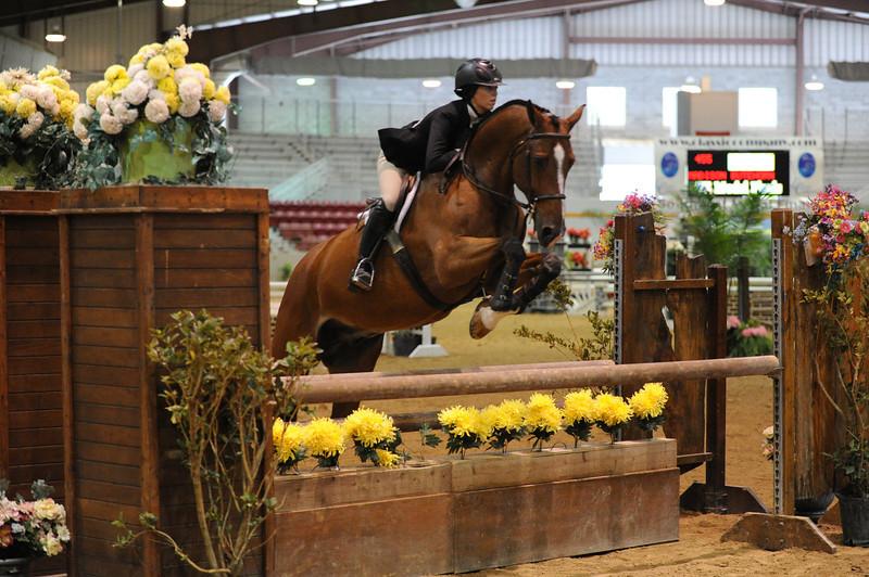 Horse show (5).jpg