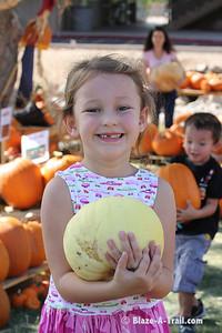 Pumpkin Harvest 2010