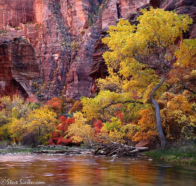Zion_Temple_of_Sinawa_Autumn_Fall c2 200kb.jpg