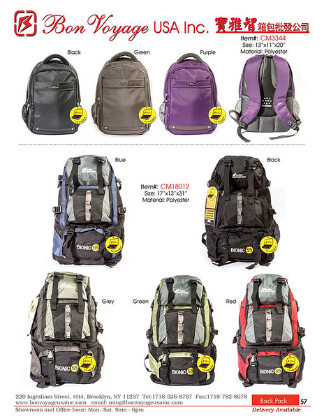BackPack p57-X2.jpg