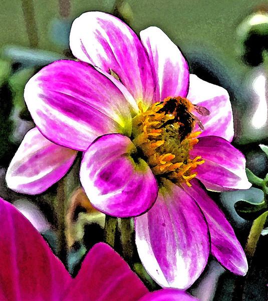 beeflowerartcolor.jpg