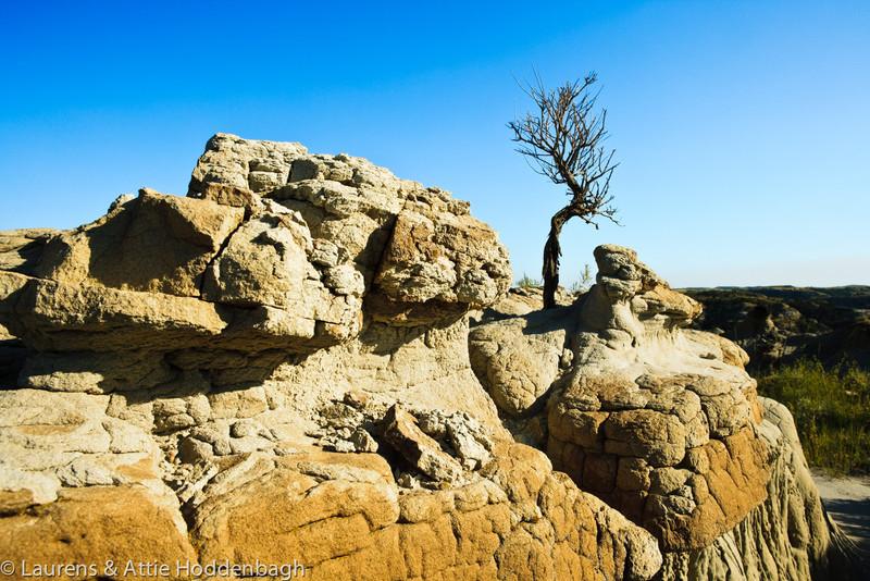 Theodore Roosevelt National Park, North Unit, ND  Filename: CEM009439-TRNP-ND-USA.jpg