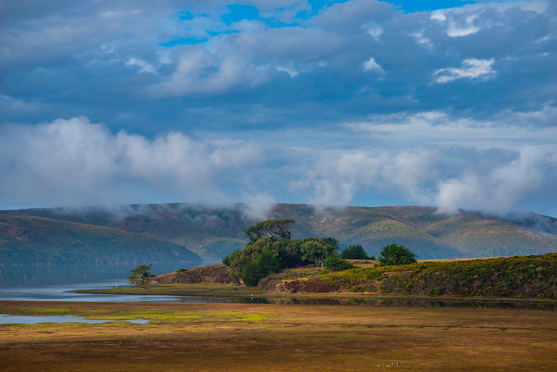 Walker Creek flowing into Tomales Bay, CA