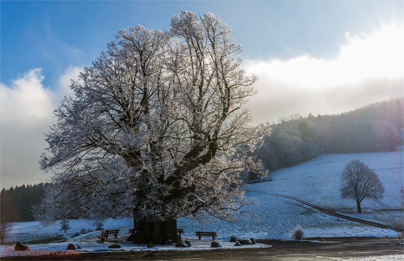 2017-12-07 Winter Boezberg - 0U5A0643-Bearbeitet.jpg