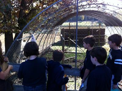 Grade 5 Zoo Field Trip