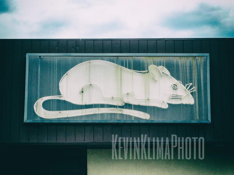 Exterminator Sign with Neon Rat