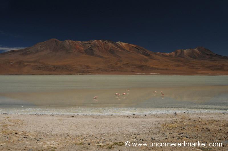 Striped Desert - Salar Tour, Bolivia
