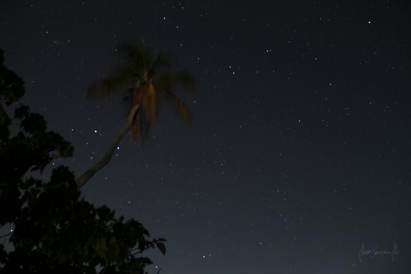 MAHO AT NIGHT