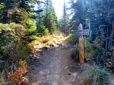 Thomas Lake Trail #111 - Indian Heaven Wilderness - September 8, 2021