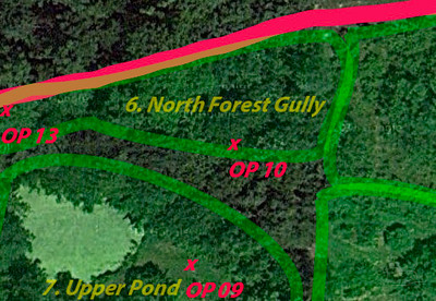 OP 10 North Forest Gully East