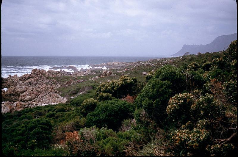 SAfricaZim1_114.jpg