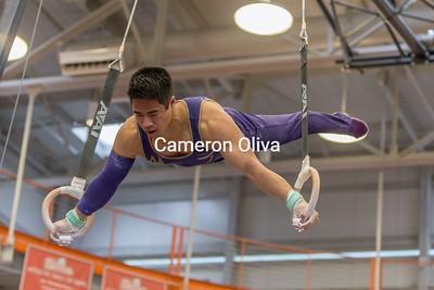 2017 Mens Collegiate Gymnastics Championships