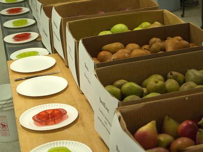 Pear Tasting 2011