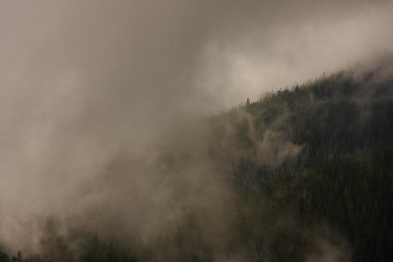 Mt.Rainier 0018.JPG