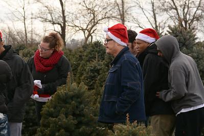 Advent Christmas Tree Farm